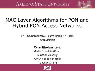 MAC Layer Algorithms for PON and Hybrid PON Access Networks