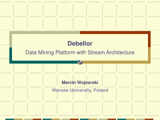 Debellor Data Mining Platform with Stream Architecture