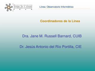 Coordinadores de la L�nea