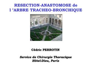 RESECTION-ANASTOMOSE de l 'ARBRE TRACHEO-BRONCHIQUE