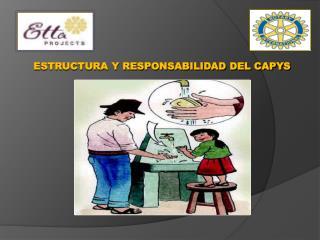 ESTRUCTURA Y RESPONSABILIDAD DEL CAPYS