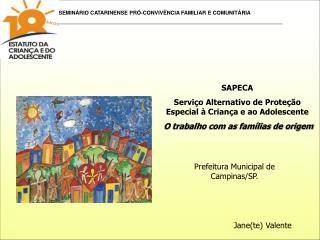 SAPECA Servi o Alternativo de Prote  o Especial   Crian a e ao Adolescente  O trabalho com as fam lias de origem