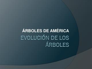 EVOLUCIÓN DE LOS ÁRBOLES