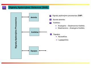 Signal ų Apdorojimo Sistemos (SAS)