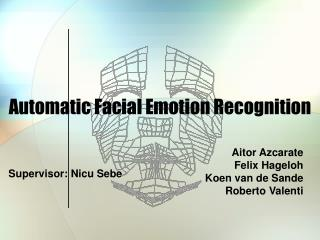Automatic Facial Emotion Recognition