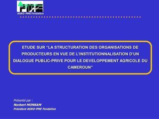 Présenté par :  Norbert MONKAM Président AGRO-PME Fondation
