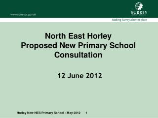 North East Horley  Proposed New  Primary  School  Consultation