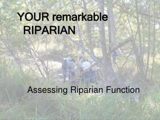 Assessing Riparian Function