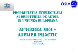 Proprietatea intelectualA  Si drepturile de autor  �n Uniunea EuropeanA Afacerea mea �