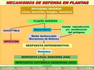 MECANISMOS DE DEFENSA EN PLANTAS