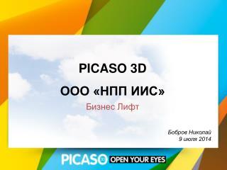 PICASO 3D ООО «НПП ИИС» Бизнес Лифт