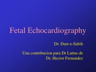echocardiography in pediatric and congenital heart disease pdf free download