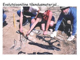 Evolutsiooniline tõendusmaterjal...