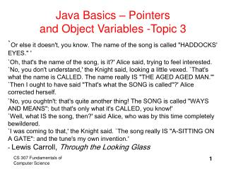 Java Basics   Pointers and Object Variables -Topic 3