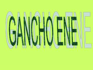 GANCHO ENE