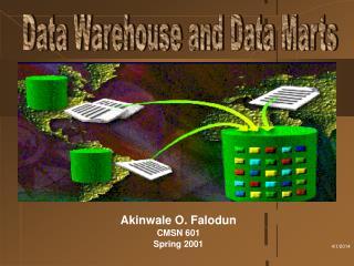 Akinwale O. Falodun CMSN 601 Spring 2001