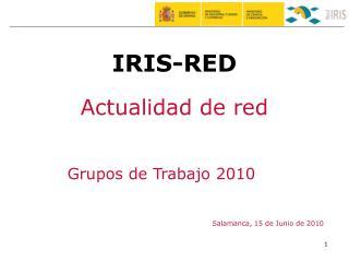 Grupos de Trabajo 2010
