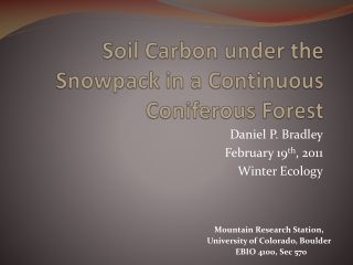 Soil Carbon under the Snowpack in a Continuous Coniferous Forest