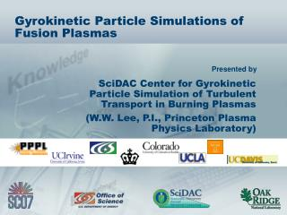 Gyrokinetic Particle Simulations of Fusion Plasmas