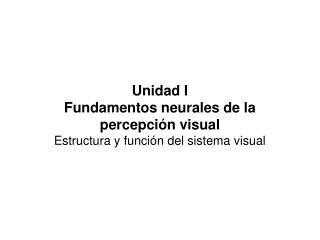 Unidad I Fundamentos neurales de la percepción visual Estructura y función del sistema visual
