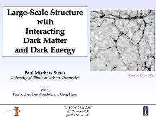 Large-Scale Structure with  Interacting  Dark Matter  and Dark Energy