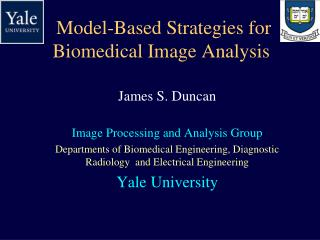Model-Based Strategies for Biomedical Image Analysis
