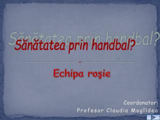 Coordonator:  Profesor  Claudia Mogîldea