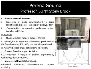 Perena Gouma Professor, SUNY Stony Brook