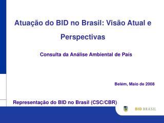 Atua��o do BID no Brasil: Vis�o Atual e Perspectivas