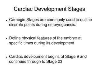 Cardiac Development Stages