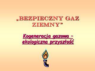 """""""Bezpieczny Gaz Ziemny"""""""