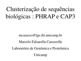 Clusterização de sequências biológicas : PHRAP e CAP3 mcarazzo@lge.ibi.unicamp.br