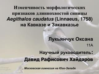 Лукьянчук Оксана 11А Научный руководитель : Давид Рафисович Хайдаров