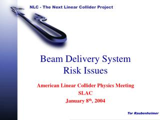 Beam Delivery System  Risk Issues