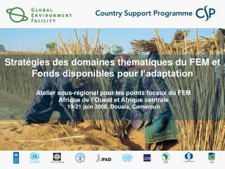 Stratégies des domaines thématiques du FEM et  Fonds disponibles pour l'adaptation