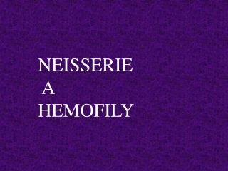 NEISSERIE  A  HEMOFILY
