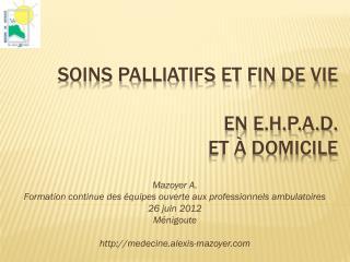 Soins palliatifs et fin de Vie en E.H.P.A.D.  et à domicile