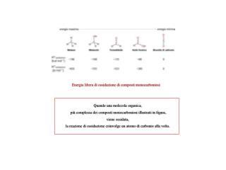 Energia libera di ossidazione di composti monocarboniosi