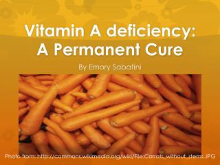 Vitamin  A deficiency:  A  Permanent Cure