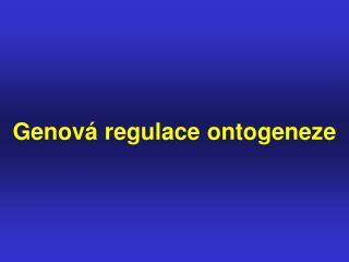 Genová regulace ontogeneze