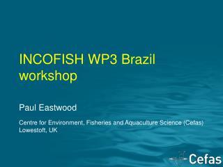 INCOFISH WP3 Brazil workshop