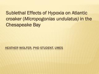 Heather  wolfer ,  phd  student,  umes