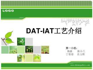 120rencai DAT-IAT 工艺介绍