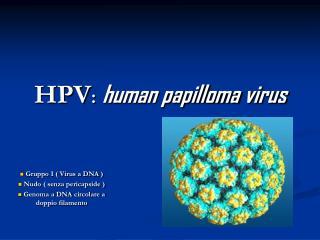 HPV : human papilloma virus
