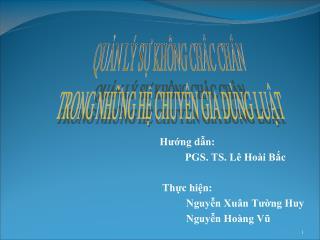 Hướng dẫn: PGS. TS. Lê Hoài Bắc Thực hiện: Nguyễn Xuân Tường Huy Nguyễn Hoàng Vũ