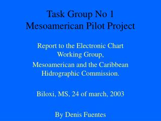 Task Group No 1 Mesoamerican Pilot Project