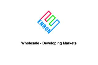 Wholesale - Developing Markets