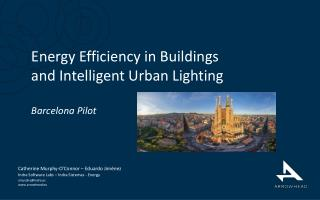 Energy Efficiency in Buildings  and Intelligent Urban Lighting Barcelona Pilot