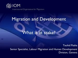 Migration and Development What is at stake? Tauhid Pasha