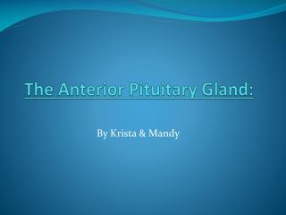 The Anterior Pituitary  Gland: